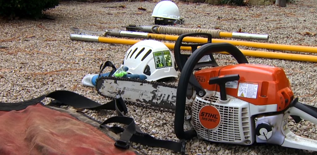 tree removal equipments on the ground